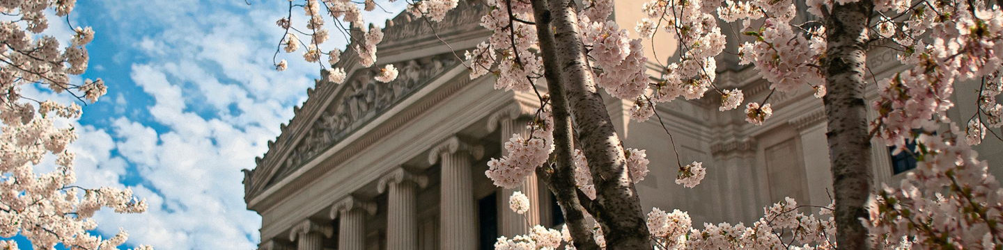 Brooklyn Museum facade with cherry blossoms