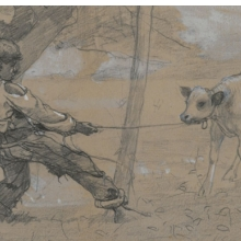 <p>Winslow Homer (American, 1836–1910). <i>The Unruly Calf</i>, circa 1875–76. Graphite and white opaque watercolor on blue-gray wove paper, 4<sup>11</sup>⁄<sub>16</sub> x 8<sup>1</sup>⁄<sub>2</sub> in. (11.9 x 21.6 cm). Brooklyn Museum, Museum Collection Fund, 24.241</p>