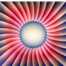 <p>Judy Chicago (American, b. 1939). <i>Through the Flower</i>, 1973. Sprayed acrylic on canvas, 60 x 60 in. (152.4 x 152.4 cm). Collection of Elizabeth A. Sackler. © Judy Chicago. Photo © Donald Woodman</p>