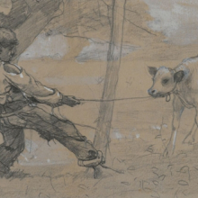 <p>Winslow Homer (American, 1836–1910). <i>The Unruly Calf</i>, circa 1875–76. Graphite and white opaque watercolor on blue-gray wove paper, 4<sup>11</sup>⁄<sub>16</sub> x 8<sup>1</sup>⁄<sub>2</sub> in. (11.9 × 21.6 cm). Brooklyn Museum, Museum Collection Fund, 24.241</p>