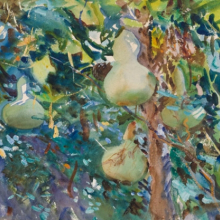 <p>John Singer Sargent (American, 1856–1925). <i>Gourds</i>, 1908. Opaque and translucent watercolor with graphite underdrawing, 14 × 22 in. (35.6 × 55.9 cm). Brooklyn Museum, Purchased by Special Subscription, 09.822</p>