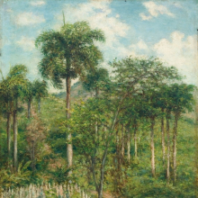 <p>Francisco Oller (Puerto Rican, 1833–1917).<em> Landscape with Royal Palm</em>, circa 1897. Oil on canvas, 18<sup>3</sup>⁄<sub>8</sub> × 13<sup>3</sup>⁄<sub>4</sub> in. (46.7 × 34.9 cm). Ateneo Puertorriqueño, San Juan, Puerto Rico</p>