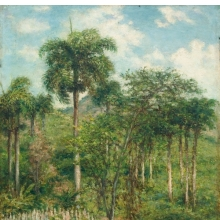 <p>Francisco Oller (Puerto Rican, 1833&ndash;1917).<em> Landscape with Royal Palm</em>, circa 1897. Oil on canvas, 18<sup>3</sup>&frasl;<sub>8</sub> &times; 13<sup>3</sup>&frasl;<sub>4</sub> in. (46.7 &times; 34.9 cm). Ateneo Puertorrique&ntilde;o, San Juan, Puerto Rico</p>