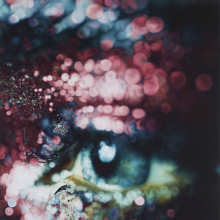 <p>Marilyn Minter (American, born 1948). <em>Glazed</em>, 2006. Enamel on metal, 96 x 60 in. (243.8 x 152.4 cm). Collection of Jeanne Greenberg Rohatyn and Nicolas Rohatyn, New York</p>