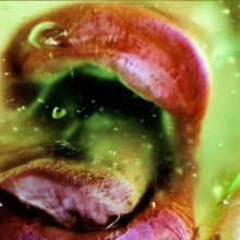 <p>Marilyn Minter (American, born 1948). Still from <em>Green Pink Caviar</em>, 2009. HD digital video, 7 min., 45 sec. Courtesy of the artist, Salon 94, New York, and Regen Projects, Los Angeles</p>