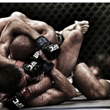 <p>Franck Seguin (French, born 1960).<em> Mixed Martial Arts Fight, UFC 154, Montreal, Canada, 2012</em>, printed 2016. Inkjet print, 9<sup>1</sup>&frasl;<sub>4</sub> x 14 in. (23.7 x 35.6 cm). Courtesy of the artist</p>