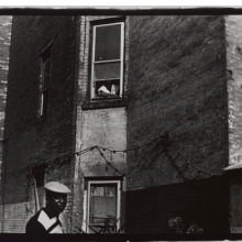 Black gallery pics