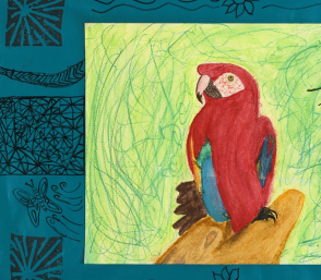 <p>Mixed media artwork, on paper, of a macaw, by student Marilyn Sumba</p>