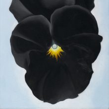 <p>Georgia O'Keeffe (American, 1887‒1986). <em>Black Pansy & Forget-Me-Nots (Pansy)</em>, 1926. Oil on canvas, 27<sup>1</sup>/<sub>8</sub> x 12<sup>1</sup>/<sub>4</sub> in. (68.9 x 31.1 cm). Brooklyn Museum; Gift of Mrs. Alfred S. Rossin, 28.521. (Photo: Christine Gant, Brooklyn Museum)</p>