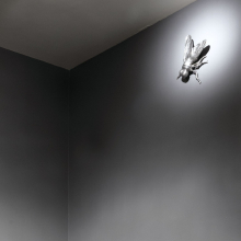 <p>Rob Wynne (American, born 1950). <em>Rob Wynne: FLOAT</em>, installation view of <em>FLY</em>, 2008. Cast aluminum, 5 x 11 x 19 in. (12.7 x 27.9 x 48.3 cm). Courtesy of Nathalie Karg/Cumulus Studios, New York. (Photo: Jonathan Dorado, Brooklyn Museum)</p>