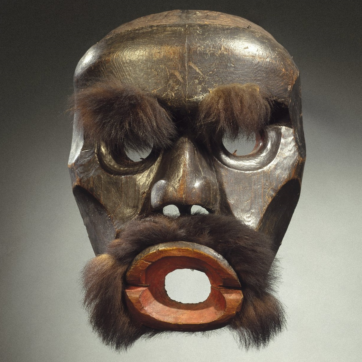 <p><i>Dzunu<ins>k</ins>wa (Cannibal Woman) Mask</i>. Kwakw<ins>a</ins>k<ins>a</ins>'wakw artist, 19th century. Knight Inlet, Vancouver Island, British Columbia, Canada. Cedar wood, fur (black bear?), hide, pigment, iron nails. Brooklyn Museum, Gift of Herman Stutzer, 15.513.1</p>