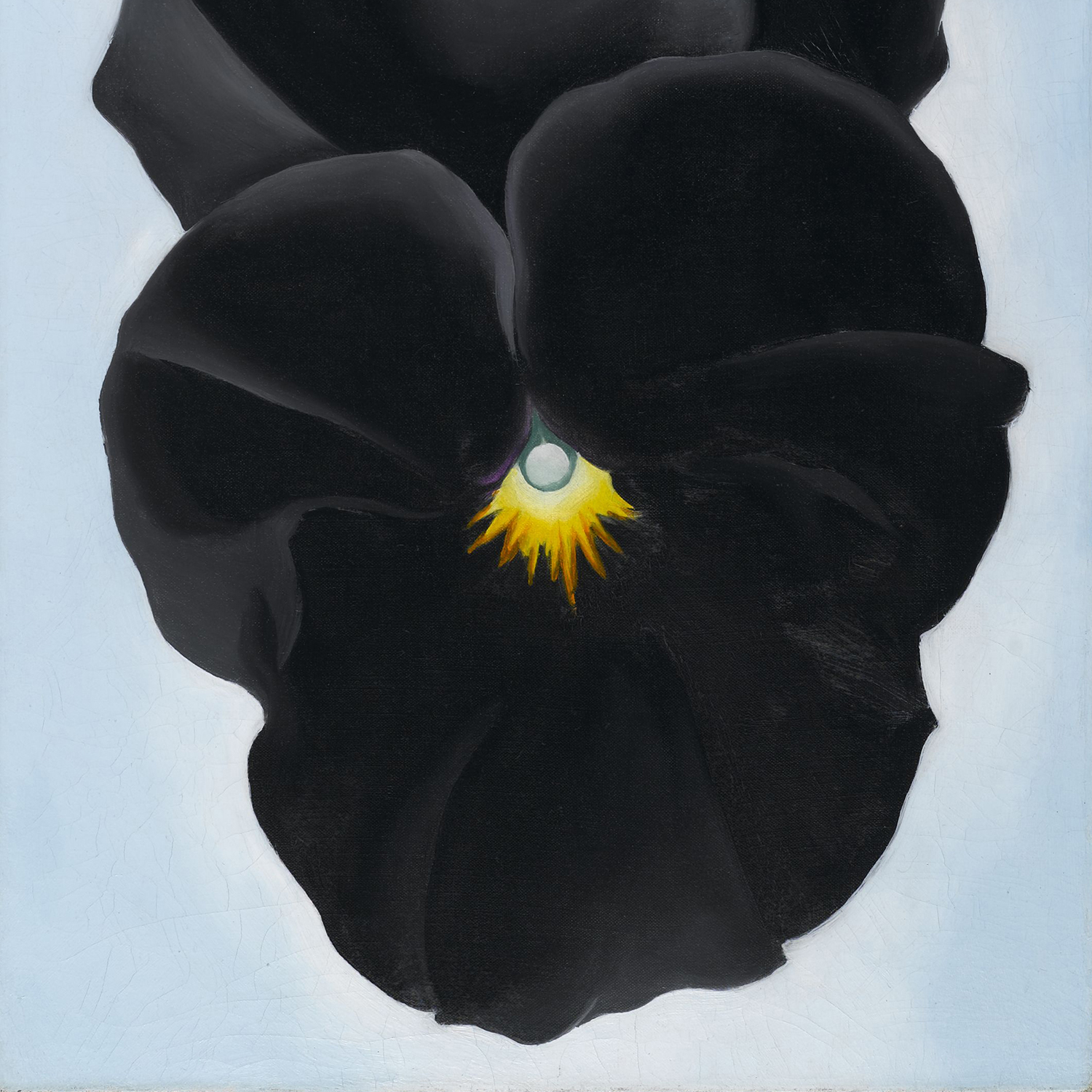<p>Georgia O&rsquo;Keeffe (American, 1887&#8210;1986). <em>Black Pansy &amp; Forget-Me-Nots (Pansy)</em>, 1926. Oil on canvas, 27<sup>1</sup>/<sub>8</sub> x 12<sup>1</sup>/<sub>4</sub> in. (68.9 x 31.1 cm). Brooklyn Museum; Gift of Mrs. Alfred S. Rossin, 28.521. (Photo: Christine Gant, Brooklyn Museum)</p>