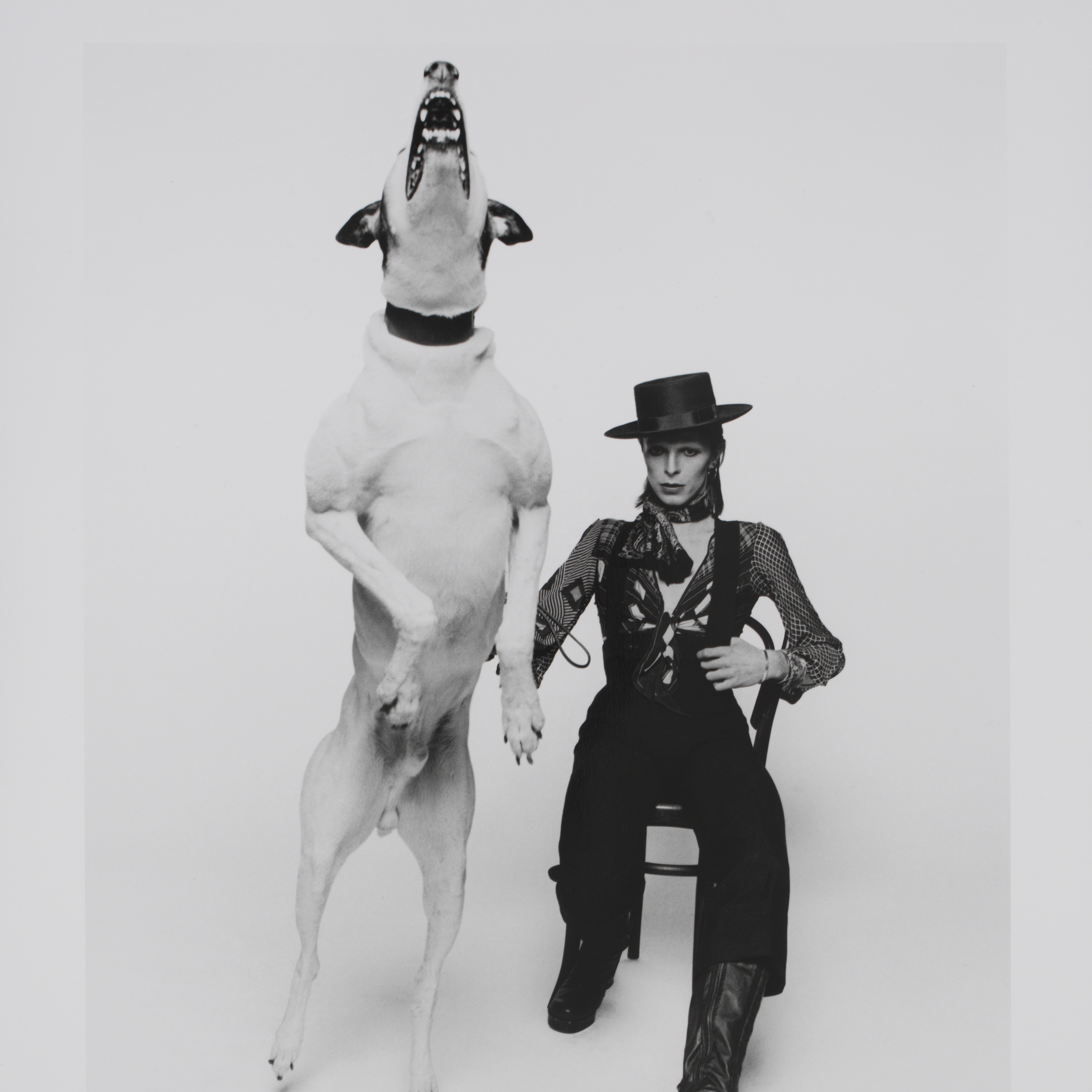 <p>Promotional photograph of David Bowie for <em>Diamond Dogs</em>, 1974. Photograph by Terry O&#39;Neill. Image &copy; Victoria and Albert Museum</p>