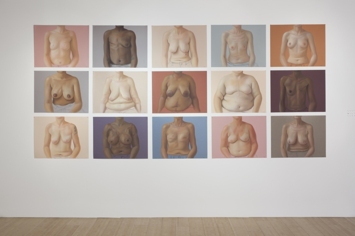 <p>Breast Portrait Installation</p>
