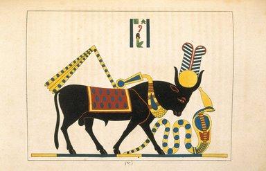 "<em>""Api or Hapi (Apis, Taureau Consacré a la Lune)""</em>, 1823-25. Printed material. Brooklyn Museum. (N372.2_C35_Champollion_pl37_SL1.jpg"