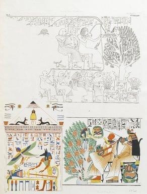 """<em>""""Due soggetti che figurano la dea Netpe uscente dall'albero mistico, a dar cibo e bevanda ai defunti. -- Anubi sta sulla mummia, mentre vola sopra quella l'anima con i segni di transmigrazione.""""</em>. Born digital. Brooklyn Museum. (Photo: Brooklyn Museum, N378_R72_SCR_Rosellini_Monumenti_v2_plCXXXIV_PS2.jpg"""