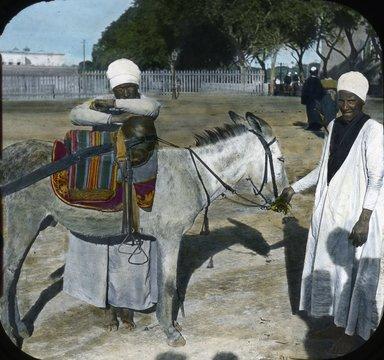 "<em>""Views, Objects: Egypt. General Views; People. View 011: Egypt - Donkey Boy, Cairo.""</em>. Lantern slide 3.25x4in, 3.25 x 4 in. Brooklyn Museum, lantern slides. (S10_08_Egypt_GeneralViews_People011.jpg"