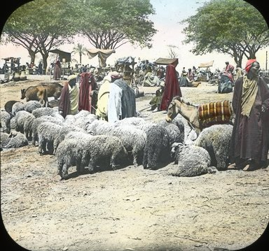 "<em>""Views, Objects: Egypt. General Views; People. View 015: Egypt - Market at Kasr-en-Nil.""</em>. Lantern slide 3.25x4in, 3.25 x 4 in. Brooklyn Museum, lantern slides. (Photo: T. H. McAllister, New York, S10_08_Egypt_GeneralViews_People015.jpg"