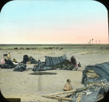 "<em>""Views, Objects: Egypt. General Views; People. View 029: Egypt - Bedouins Pasturing Camels, Abusir.""</em>. Lantern slide 3.25x4in, 3.25 x 4 in. Brooklyn Museum, lantern slides. (Photo: T. H. McAllister, New York, S10_08_Egypt_GeneralViews_People029.jpg"
