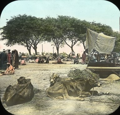 "<em>""Views, Objects: Egypt. General Views; People. View 051: Egypt - Market at Kasr-en-Nil.""</em>. Lantern slide 3.25x4in, 3.25 x 4 in. Brooklyn Museum, lantern slides. (Photo: T. H. McAllister, New York, S10_08_Egypt_GeneralViews_People051.jpg"