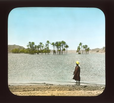 """<em>""""Views, Objects: Egypt. General Views; People. View 080: Partly submerged palms above Nile dam, Upper Egypt.""""</em>, 1908. Lantern slide 3.25x4in, 3.25 x 4 in. Brooklyn Museum, lantern slides. (Photo: Stereo-Travel Co., Corona, New York, S10_08_Egypt_GeneralViews_People080_SL1.jpg"""