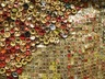 Gravity and Grace: Monumental Works by El Anatsui