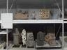Arts of Asia and Islamic World: Storage Installation