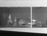 Biomorphicism & Organic Abstraction in Twentieth-Century Decorative Arts