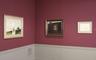 Andrew Wyeth: Helga Pictures