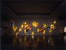Dale Chihuly: New York Installations
