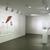 Work of Art: Kymia Nawabi, December 22, 2011 through February 05, 2012 (Image: DIG_E_2012_Work_of_Art_Kymia_Nawabi_01_PS4.jpg Brooklyn Museum photograph, 2012)