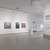 Crossing Brooklyn: Art from Bushwick, Bed-Stuy, and Beyond, October 3, 2014 through January 4, 2015 (Image: DIG_E_2014_Crossing_Brooklyn_62_PS8.jpg Brooklyn Museum photograph, 2014)