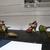 Killer Heels: The Art of the High-Heeled Shoe, September 10, 2014 through March 1, 2015 (Image: DIG_E_2014_Killer_Heels_013_PS8.jpg Brooklyn Museum photograph, 2014)