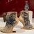 Killer Heels: The Art of the High-Heeled Shoe, September 10, 2014 through March 1, 2015 (Image: DIG_E_2014_Killer_Heels_036_PS8.jpg Brooklyn Museum photograph, 2014)