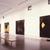 Donald Sultan, April 09, 1988 through June 13, 1988 (Image: PSC_E1988i052.jpg Brooklyn Museum photograph, 1988)