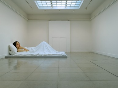 Ron Mueck, November 3, 2006 through February 4, 2007 (Image: DIG_E2006_Mueck_09_PS2.jpg Brooklyn Museum photograph, 2006)