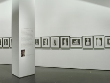 """Patricia Cronin: """"Harriet Hosmer, Lost and Found"""", June 05, 2009 through January 24, 2010 (Image: DIG_E2009_Patricia_Cronin_01_PS2.jpg Brooklyn Museum photograph, 2009)"""