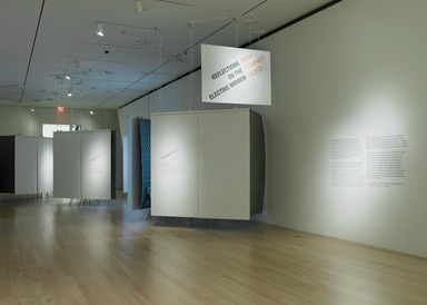 Reflections on the Electric Mirror: New Feminist Video, May 1, 2009 through January 10, 2010 (Image: DIG_E2009_Reflections_on_the_Electric_Mirror_01_PS2.jpg Brooklyn Museum photograph, 2009)