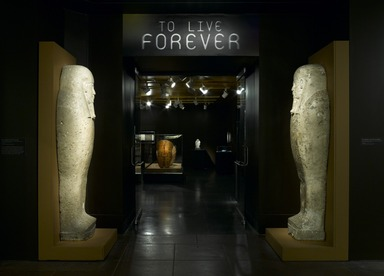 To Live Forever: Art and the Afterlife in Ancient Egypt [02/12/2010-05/02/2010]. Installation view.