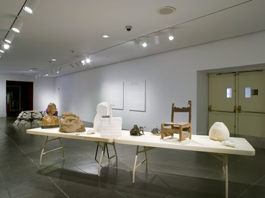 Raw/Cooked: Kristof Wickman. [09/16/2011-11/27/2011]. Installation view.