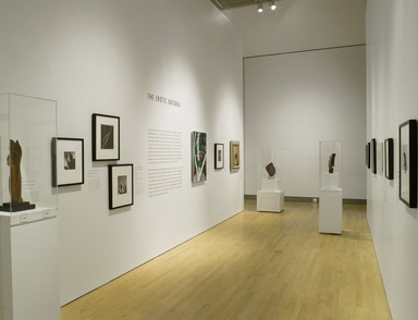 Youth and Beauty: Art of the American Twenties, October 28, 2011 through January 29, 2012 (Image: DIG_E_2011_Youth_Beauty_14_PS4.jpg Brooklyn Museum photograph, 2012)