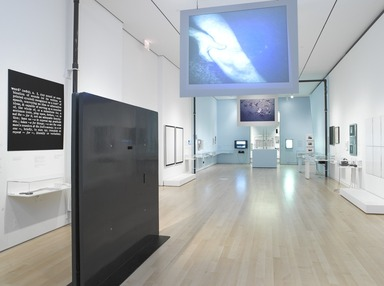 Materializing 'Six Years': Lucy R. Lippard and the Emergence of Conceptual Art, September 14, 2012 through February 17, 2013 (Image: DIG_E_2012_Six_Years_07_PS4.jpg Brooklyn Museum photograph, 2012)