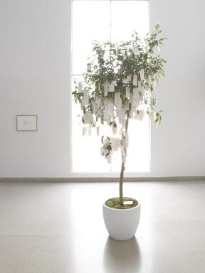 Wish Tree, November 15, 2012 through January 06, 2013 (Image: DIG_E_2012_Yoko_Ono_Wish_Tree_01_PS4.jpg Brooklyn Museum photograph, 2012)
