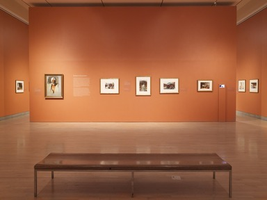 John Singer Sargent Watercolors, April 5, 2013 through July 28, 2013 (Image: DIG_E_2013_John_Singer_Sargent_012_PS4.jpg Brooklyn Museum photograph, 2013)