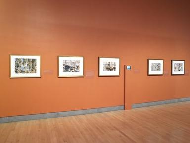 John Singer Sargent Watercolors, April 5, 2013 through July 28, 2013 (Image: DIG_E_2013_John_Singer_Sargent_013_PS4.jpg Brooklyn Museum photograph, 2013)