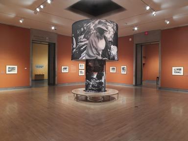 John Singer Sargent Watercolors, April 5, 2013 through July 28, 2013 (Image: DIG_E_2013_John_Singer_Sargent_029_PS4.jpg Brooklyn Museum photograph, 2013)