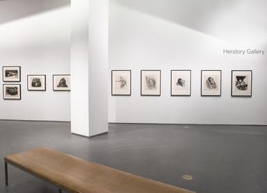 "Käthe Kollwitz: Prints from the ""War"" and ""Death"" Portfolios, March 15, 2013 through September 15, 2013 (Image: DIG_E_2013_Kathe_Kollwitz_004_PS4.jpg Brooklyn Museum photograph, 2013)"