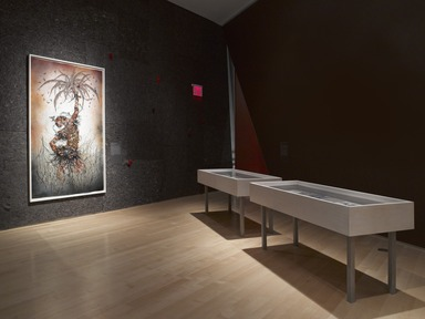 Wangechi Mutu: A Fantastic Journey, October 11, 2013 through March 09, 2014 (Image: DIG_E_2013_Wangechi_Mutu_14_PS4.jpg Brooklyn Museum photograph, 2013)