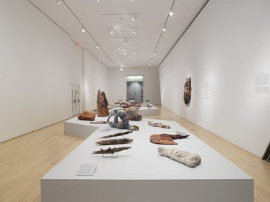 Judith Scott--Bound and Unbound, October 24, 2014 through March 29, 2015 (Image: DIG_E_2014_Judith_Scott_Bound_and_Unbound_001_PS4.jpg Brooklyn Museum photograph, 2014)