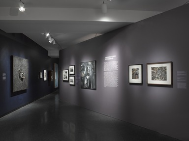 Witness: Art and Civil Rights in the Sixties, March 7, 2014 through July 13, 2014 (Image: DIG_E_2014_Witness_013_PS9.jpg Brooklyn Museum photograph, 2014)